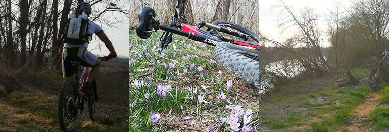 Bike Tribe Mtb Trail: riaperto il tratto da Chiesavecchia a Casa Ombretta!